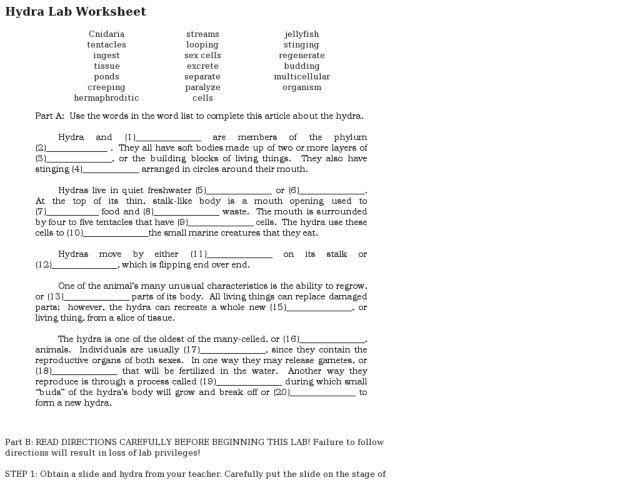Of Hydra Lab Worksheet Answers Adriaticatoursrl