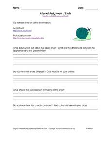 Internet Assignment- Snails Worksheet