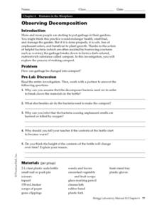 Observing Decomposition Worksheet