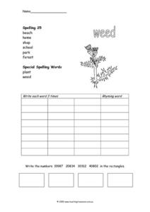 Spelling and Math Activity Worksheet