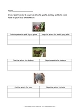 Animals and the Environment Worksheet