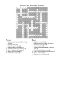 Skeletal And Muscular Systems Crossword Puzzle Answers Worksheet For
