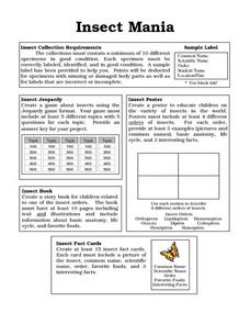 Insect Mania Worksheet
