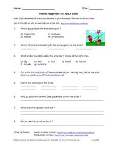 Internet Assignment: All about Snails Worksheet