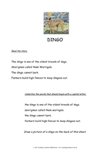Dingo Worksheet