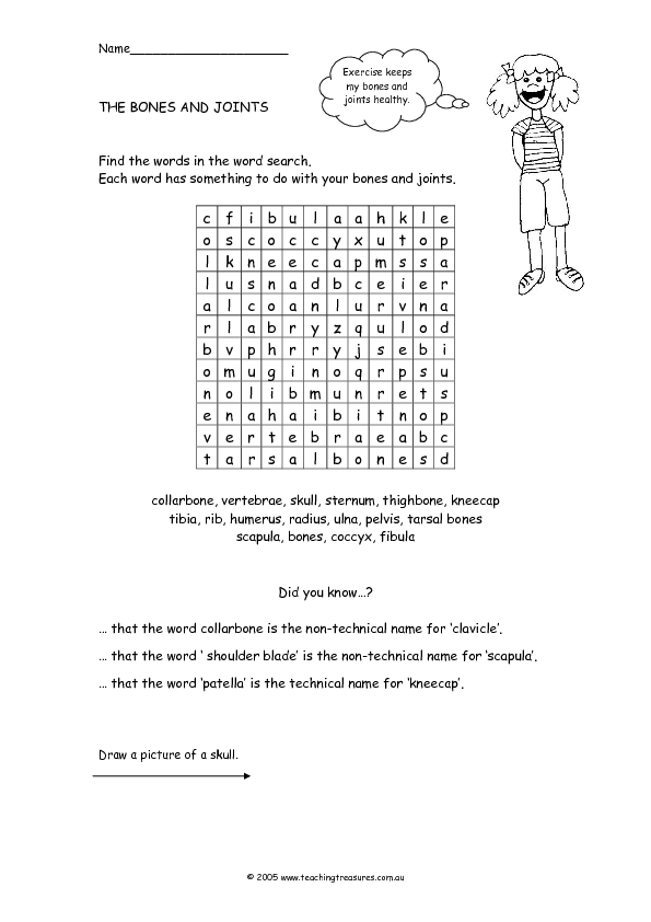The Bones and Joints 3rd - 5th Grade Worksheet | Lesson Planet
