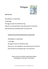 Platypus Worksheet