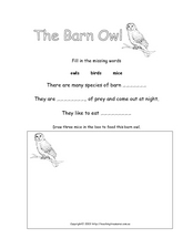 The Barn Owl Worksheet
