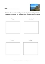 Water For All Living Things Worksheet