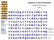 Animals in the Wetlands Worksheet