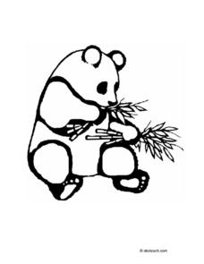 Panda Bear Coloring Page Worksheet