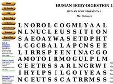 Human Body Digestion Worksheet