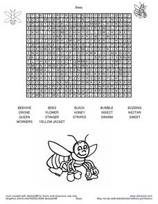 Word Search-Bees Lesson Plan