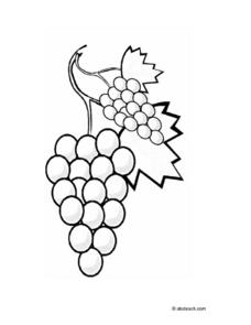 Grapes Coloring Sheet Worksheet
