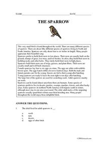 The Sparrow Worksheet
