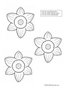 Color the Daffodils Worksheet