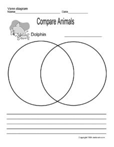Compare Animals Worksheet