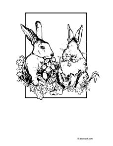 Rabbit Coloring Pages Worksheet