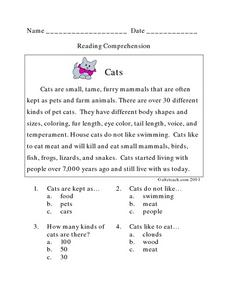 Cats: Reading Comprehension Lesson Plan