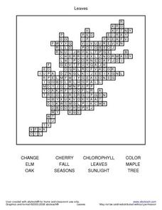 Leaves Word Search Worksheet
