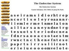 The Endocrine System Word Puzzle Worksheet