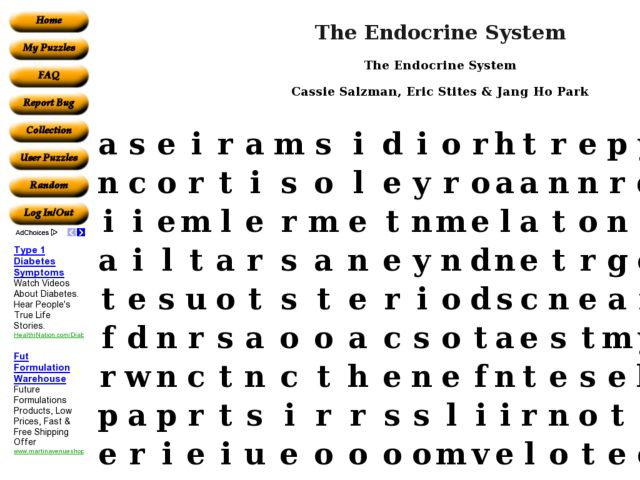 The Endocrine System Word Puzzle Worksheet For 10th 11th