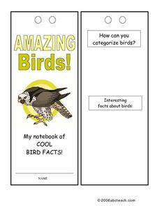 Amazing Birds! Worksheet