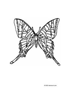Symmetrical Butterfly Worksheet