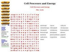 Cell Processes and Energy Worksheet