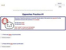 Opposites Practice #1 Lesson Plan