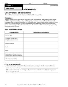 Observations of a Mammal Worksheet