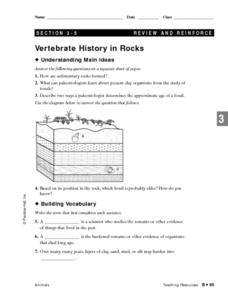 Vertebrate History in Rocks Lesson Plan
