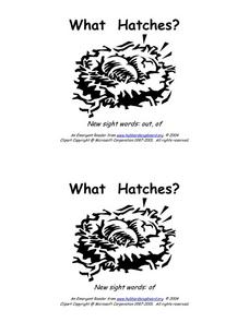What Hatches? Worksheet