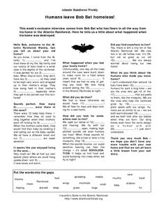 Humans Leave Bob Bat Homeless! Lesson Plan
