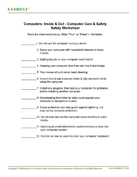 Computers: Inside & Out- Computer Care & Safety Worksheet Worksheet
