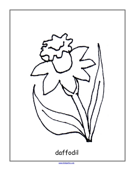 Daffodils Worksheets Reviewed by Teachers