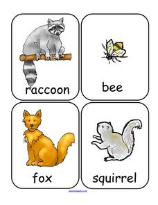 Forest Animals Word And Picture Cards Lesson Plan