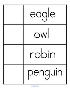 Birds Word Wall Worksheet