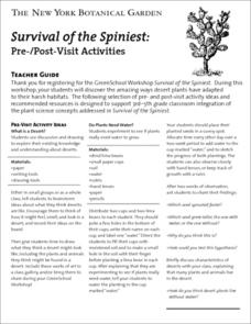 Survival of the Spiniest Worksheet