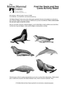 Find the Seals and Sea Lions Lesson Plan