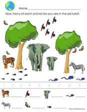Counting Animals Lesson Plan
