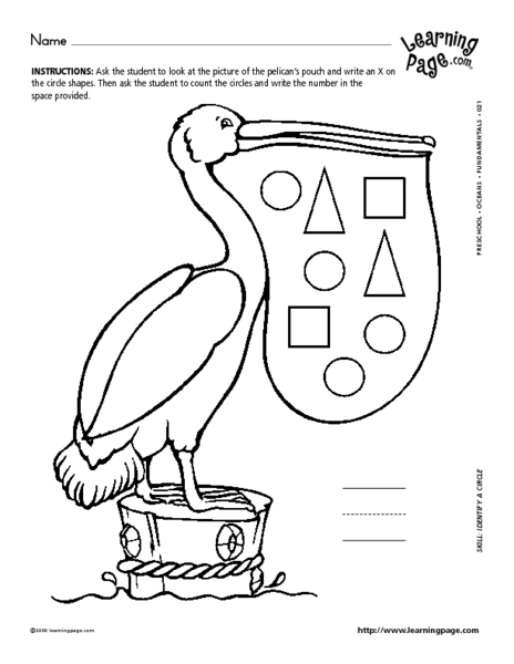 Pelican's Pouch Counting Circles Lesson Plan for