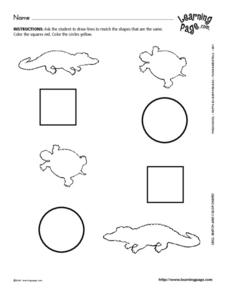 Picture Matching-- Squares, Circles Lesson Plan