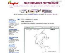 Dolphin Coloring Page Worksheet