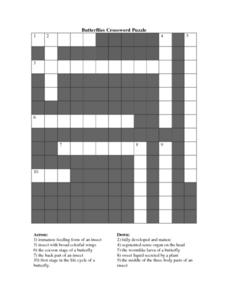 Butterflies Crossword Puzzle Worksheet
