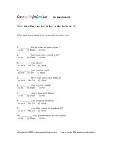 Auxiliary Verbs (To Be, To Do, To Have) 2 Lesson Plan