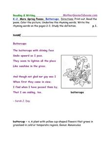 More Spring Poems: Buttercups Worksheet