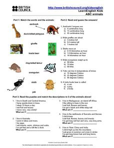 ABC Animals Lesson Plan