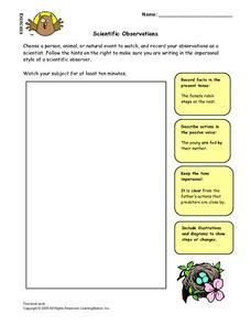 Scientific Observations Lesson Plan