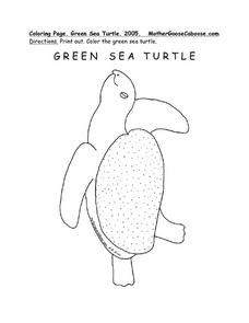 Green Sea Turtle Worksheet